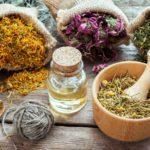 Sedativi naturali: erbe e sane abitudini per dormire