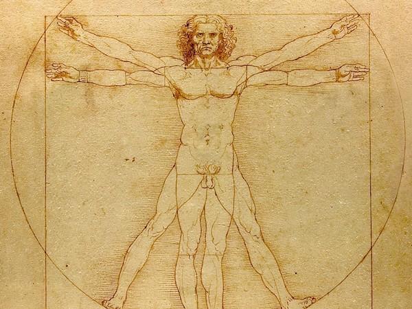 "ALT=""disegno Da Vinci"""