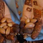olio di Argan - mani con semi