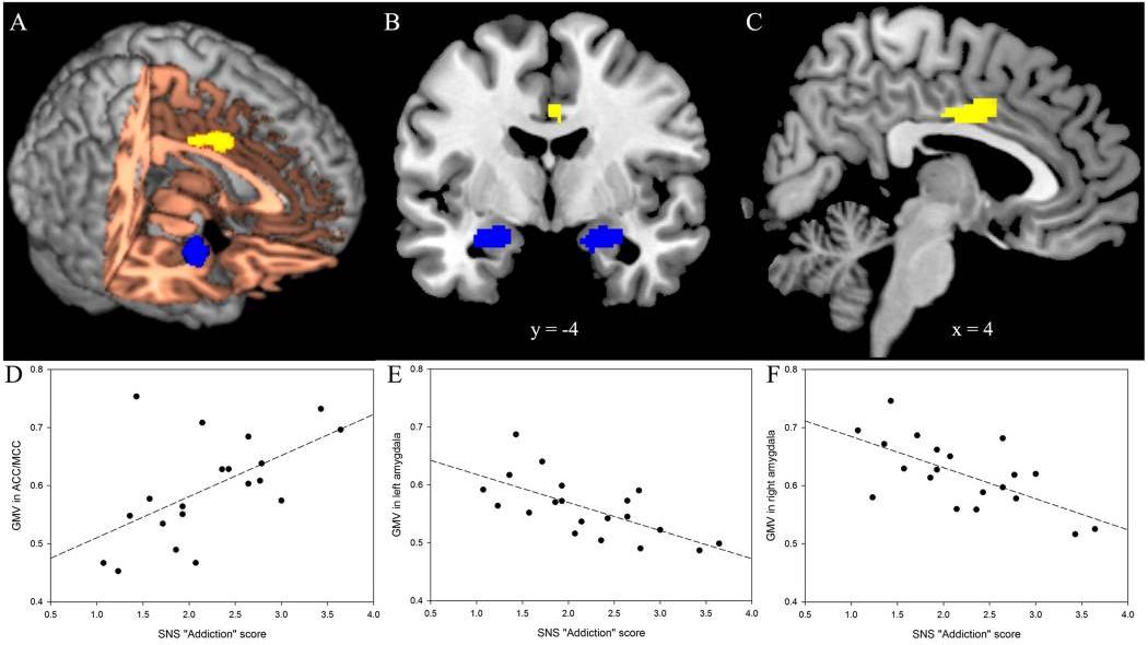 Dipendenza da social network - risultati dello studi di He et al. (2017)