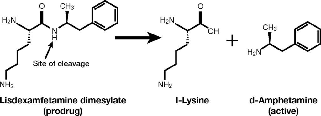 BED - attivazione lisdexamfetamina dimesilato