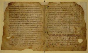Il Codice Ursicino - biblioteca
