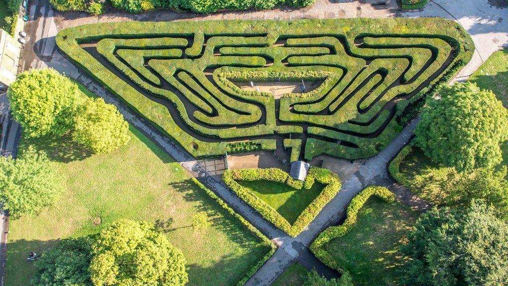 labirinto di Hampton Court