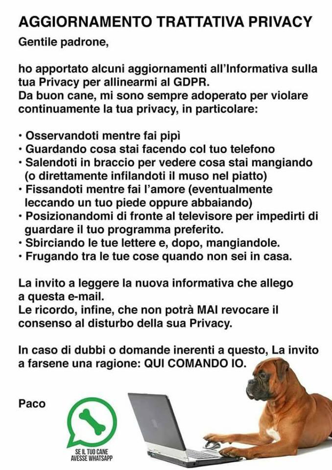 GDPR per animali