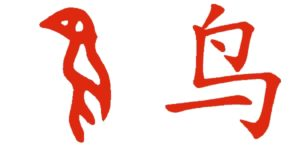 I pittogrammi cinesi, come 鸟 (uccello), hanno subito un'evoluzione nei secoli