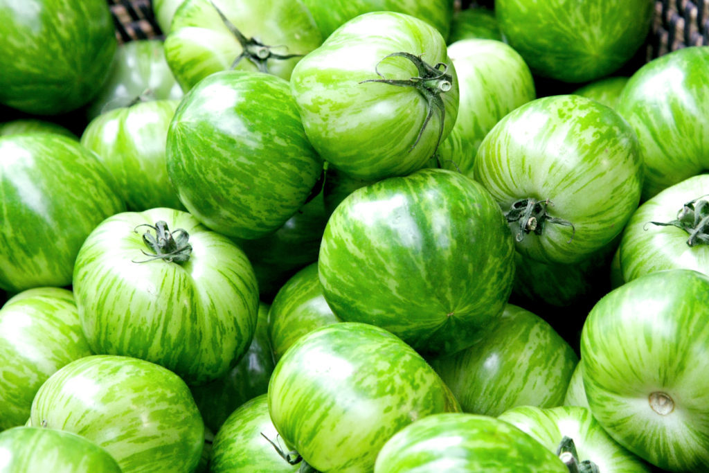 Pomodori Green Zebra