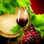 Resveratrolo d'uva: sostanza portentosa o falso mito?