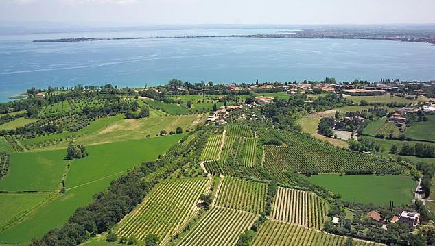 vini bresciani - Riviera del Garda Bresciano