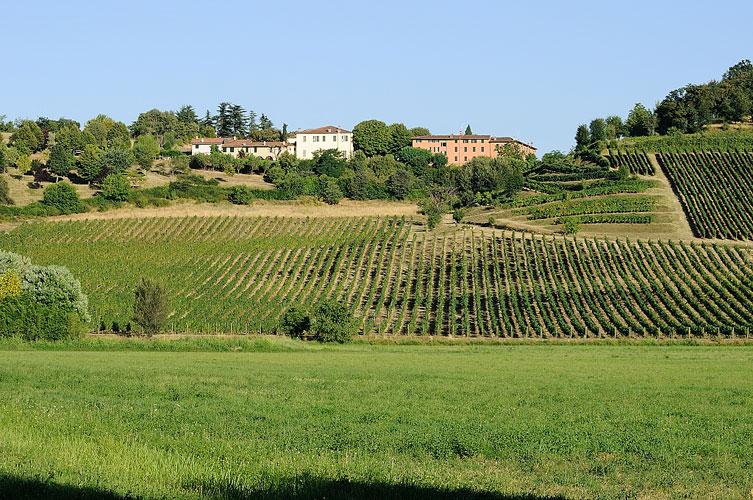 vini bresciani cellatica