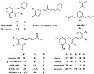 Struttura dei principali biofenoli della propoli da Molecules