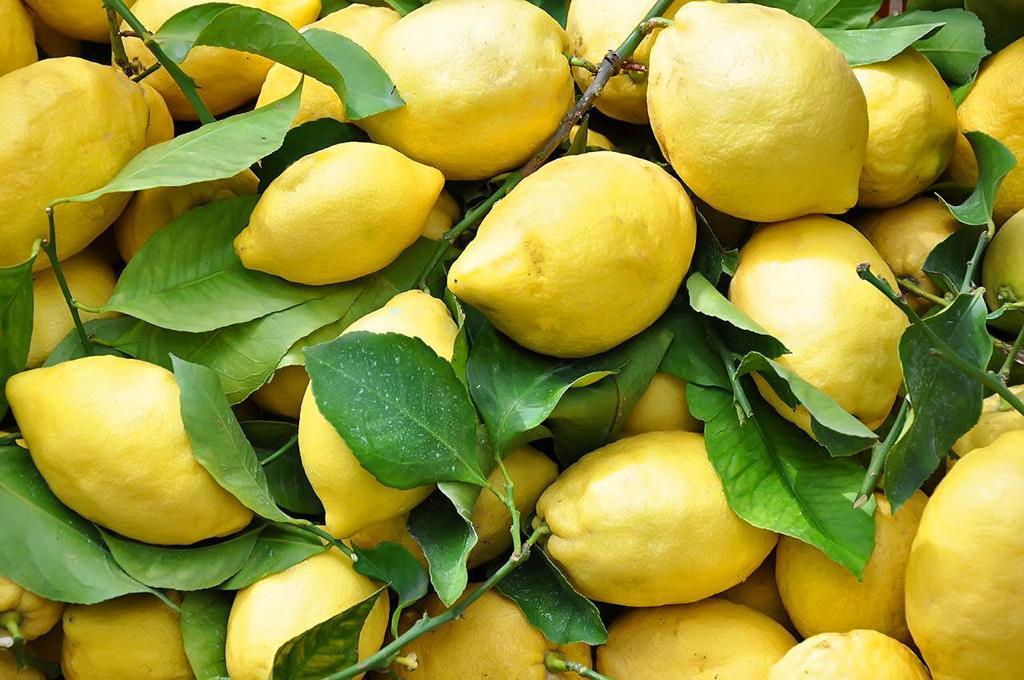 Cesto di Limoni - copertina articolo giallo limone
