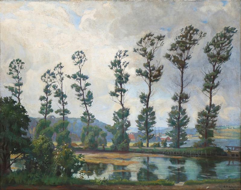 Pioppi ad Hobro, Einar Wegener, 1908