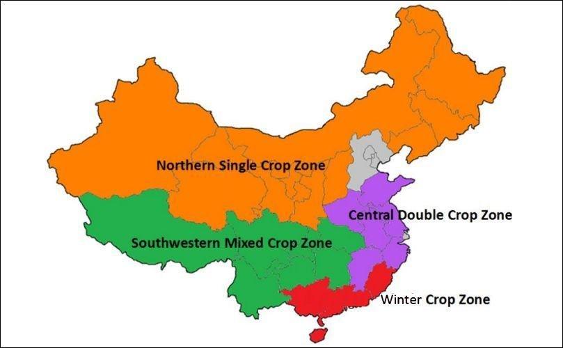 Patate in Cina - zone di produzione - © GAIN Report