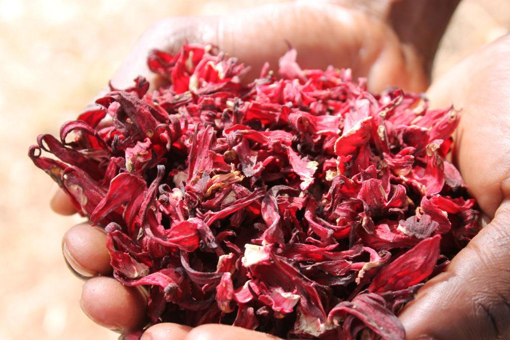 Calici d'ibisco o karkadè essiccati