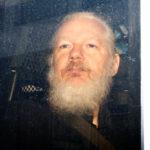 Julian Assange condannato a 50 settimane di carcere