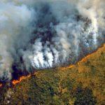 L'Amazzonia brucia: il G7 contro Bolsonaro