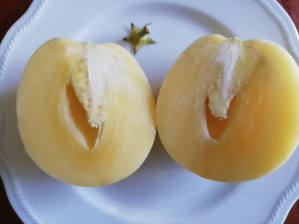 Melone Pepino in sezione