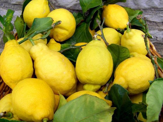Limoni sfusati