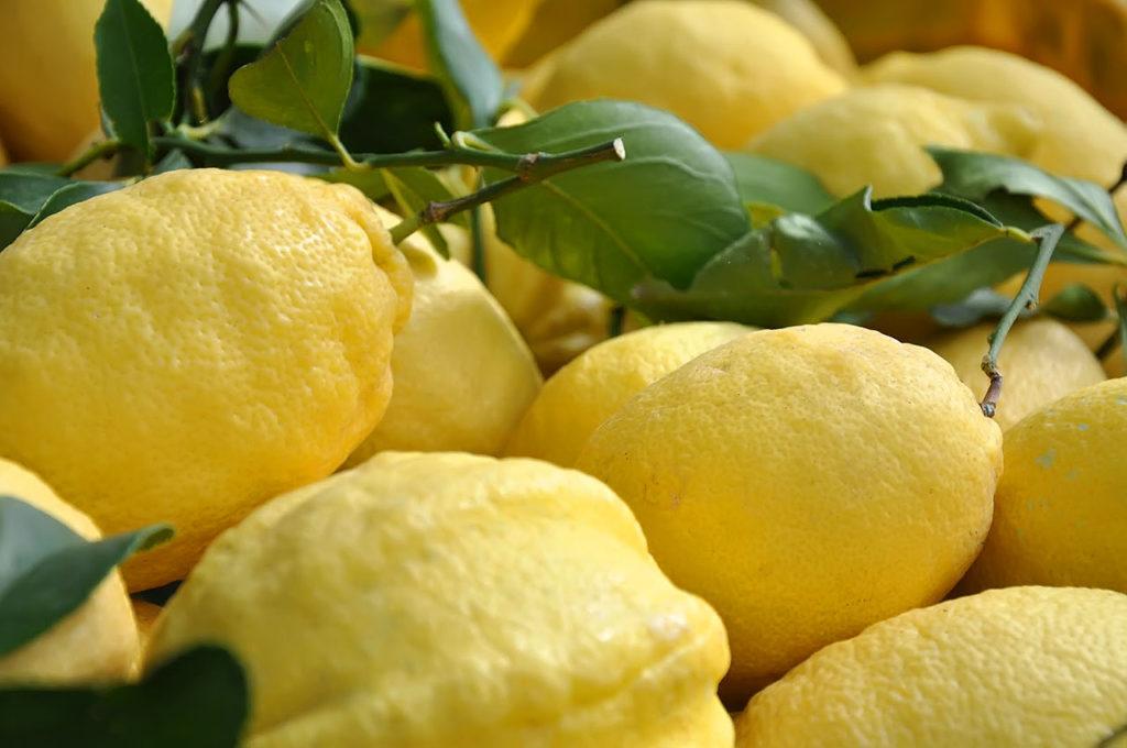 Limone sfusato di Amalfi o Sfusato amalfitano