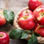 Mele: ricette a base del pomo più noto della storia