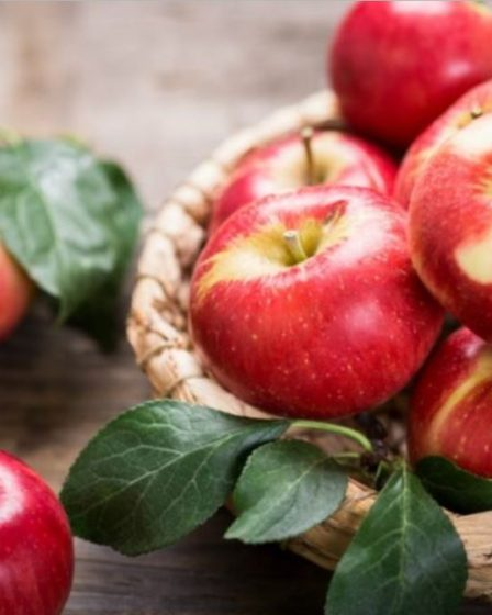 cestino di mele