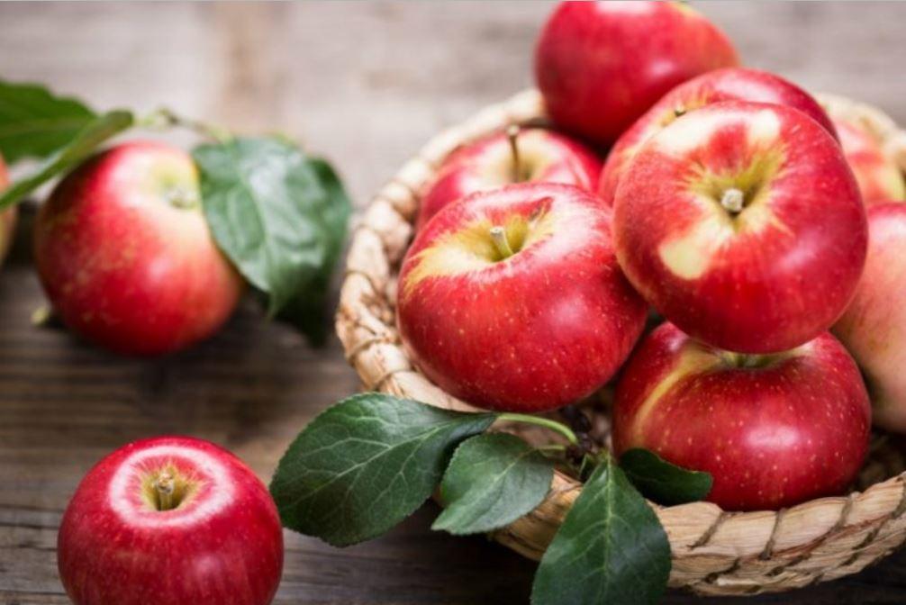 Ricette dolci e salate con le mele
