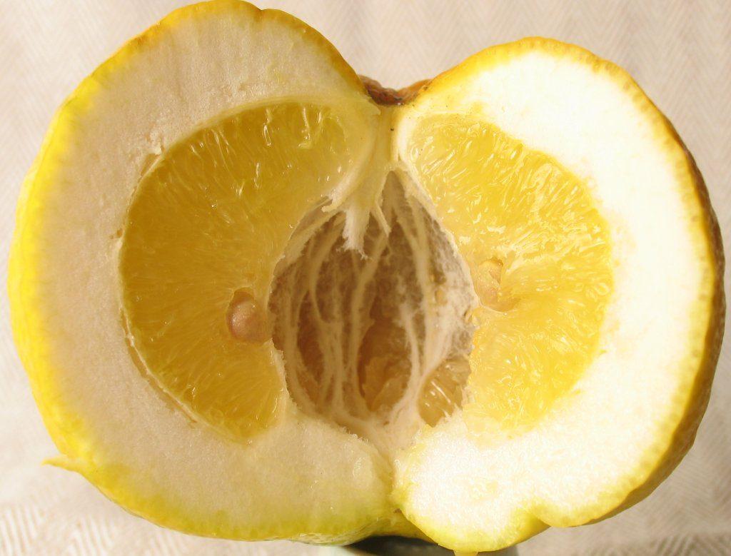 Pompia_frutto_aperto