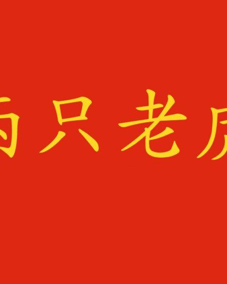 Canzone cinese per bambini: 两只老虎