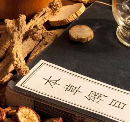Medicina tradizionale cinese - droghe vegetali e aghi