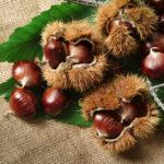Castagne: valori nutrizionali, consigli e ricette