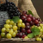 Uva: valori nutrizionali, consigli per la dieta e ricette