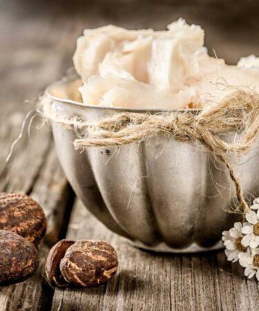 Burro di karité - Shea butter - Butyrospermum parkii butter extract